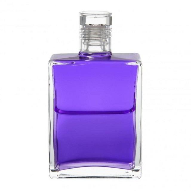 B16 Violett/Violett Das violette Gewand