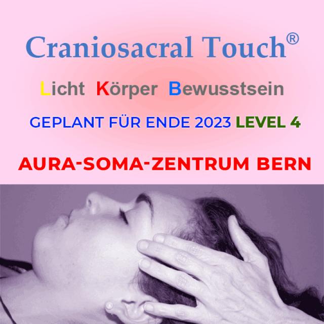 Craniosacral Touch® Modul 4